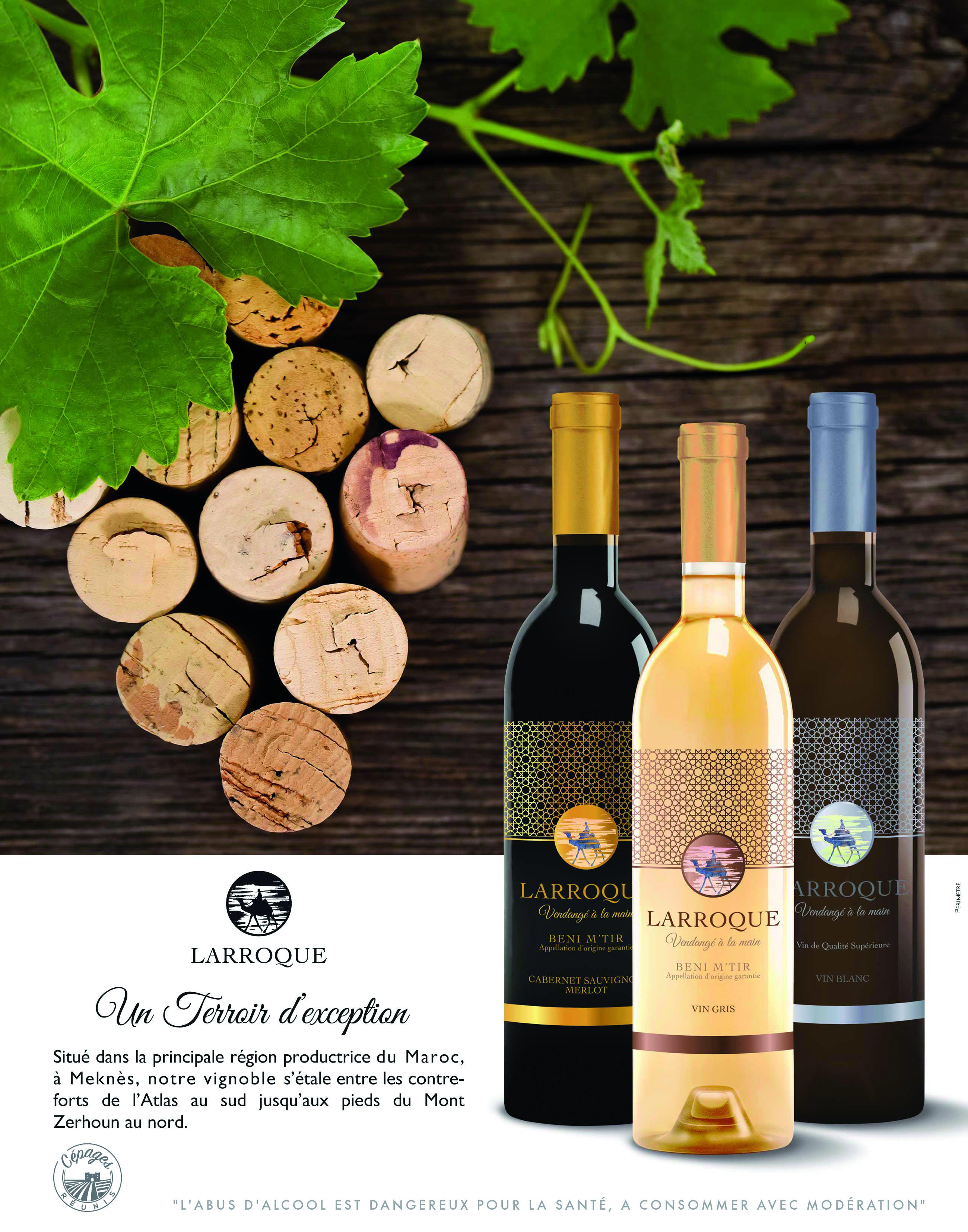 Wines & partners   bestrestaurantsmaroc.com