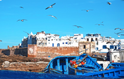 Restaurants Essaouira